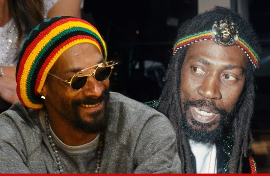 0123-buddy-wailer-snoop-dogg-snoop-lion-article-getty-6